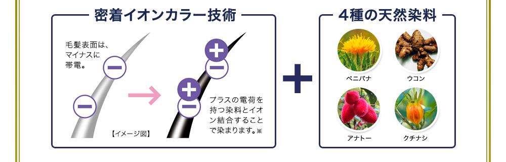 密着イオンカラー技術+4種の天然染料