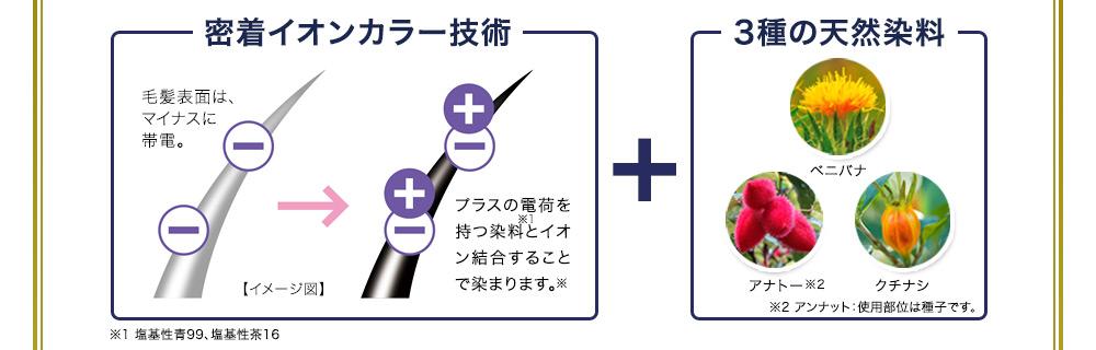 密着イオンカラー技術+3種の天然染料