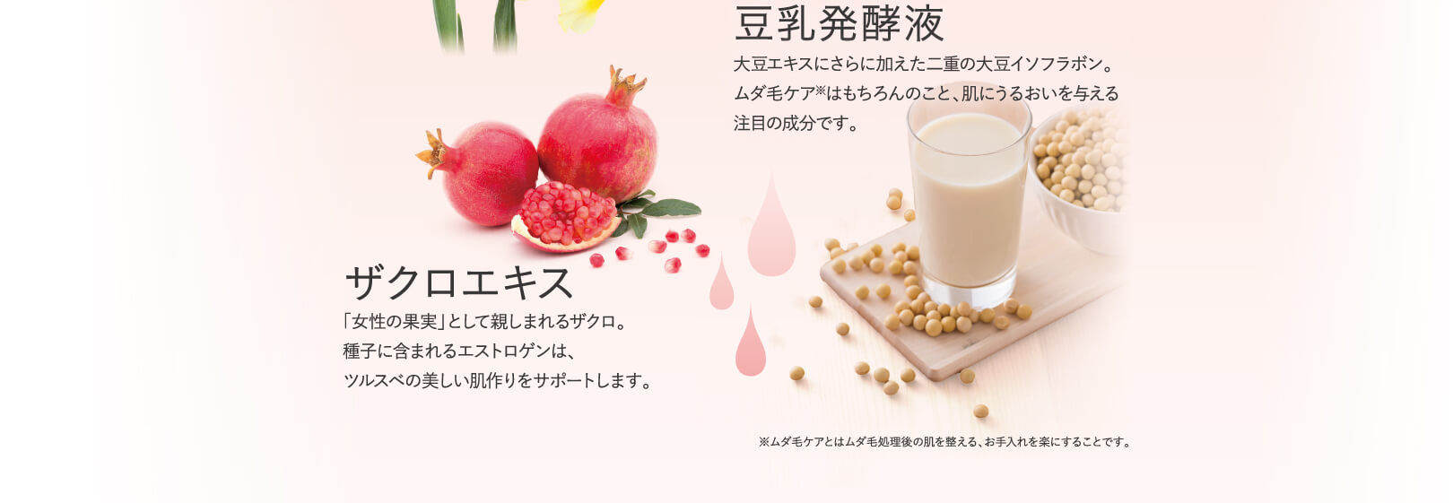 豆乳発酵液 ザクロエキス