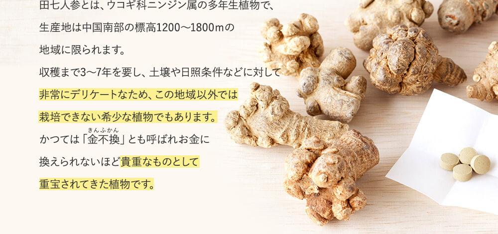 田七人参とは、ウコギ科ニンジン属の多年生植物で、生産地は中国南部の標高1200~1800mの地域に限られます。