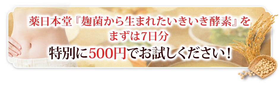 特別に500円でお試しください!