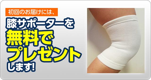 初回のお届けには、膝サポーターを無料でプレゼントします!