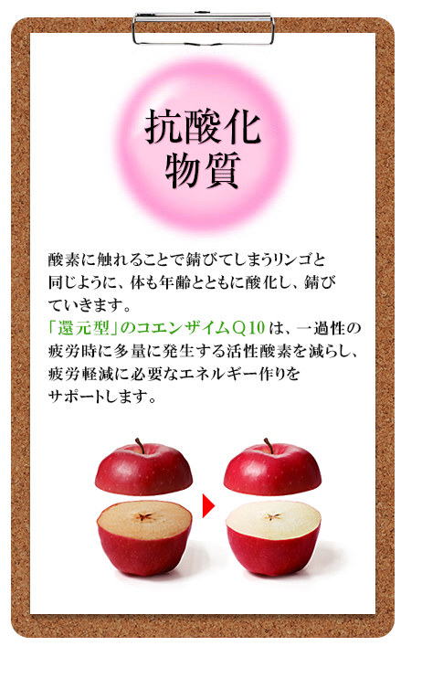 若々しさ:  リンゴを切ってそのままにしておくと酸化して、切り口が茶色になるように、私たちのカラダの中でも同じことがおきているのです。健康成分として今大変注目をされている「コエンザイムQ10」は若々しい毎日を応援します。