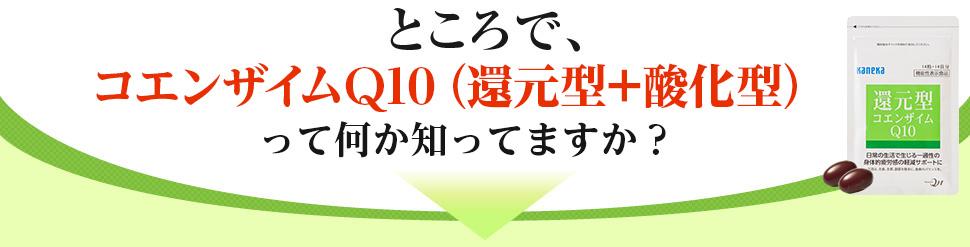 ところで、コエンザイムQ10って何か知っていますか?