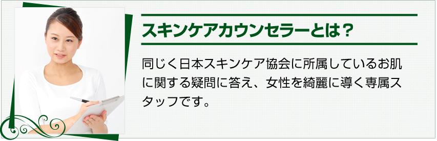 スキンケアカウンセラーとは?同じく日本スキンケア協会に所属しているお肌に関する疑問に答え、女性を綺麗に導く専属スタッフです。