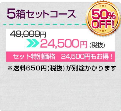 5箱セットコース 50%OFF 24,500円(税抜)※送料702円が別途かかります
