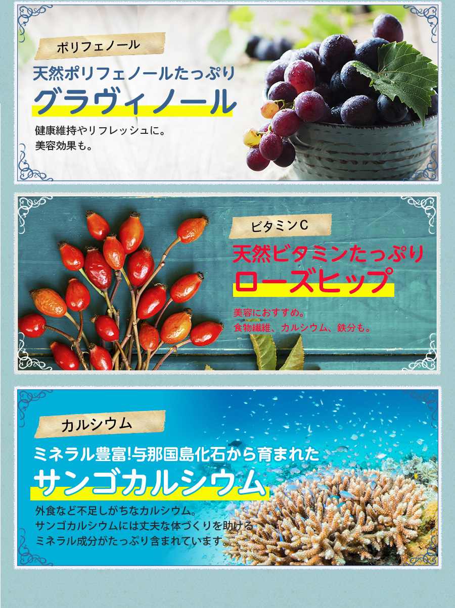 天然ポリフェノールたっぷりグラヴィノール 天然ビタミンたっぷりローズヒップ ミネラル豊富!与那国島化石から育まれたサンゴカルシウム