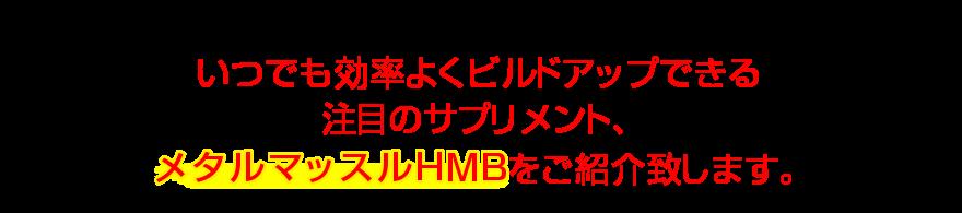 いつでも効率よくビルドアップできる注目のサプリメント、メタルマッスルHMBをご紹介致します。