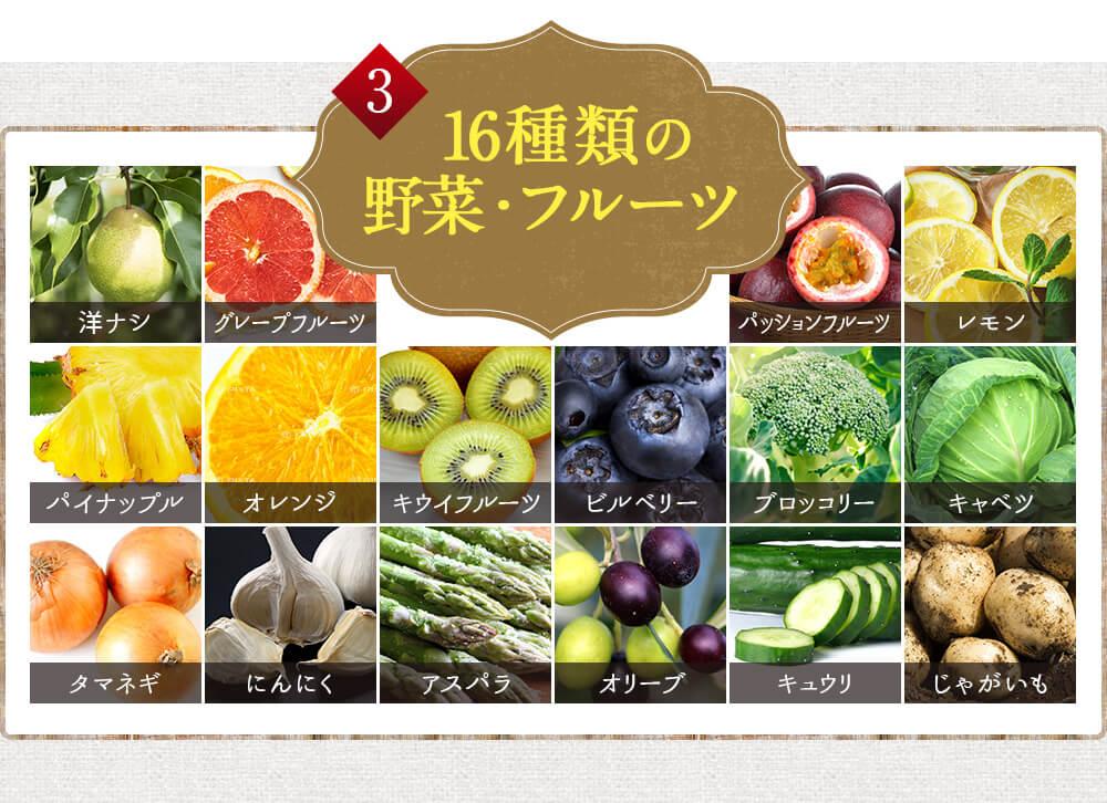 16種類の野菜・フルーツ