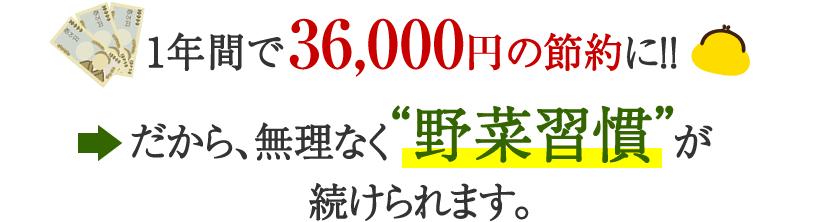 """1年間で36000円の節約に!!→だから、無理なく""""野菜習慣""""が続けられます。"""