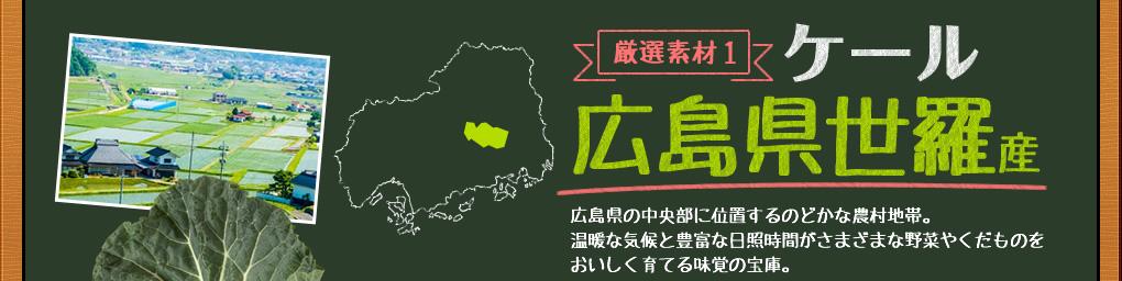 ケール,広島県世羅産