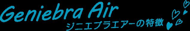 Geniebra Air(ジニエブラエアーの特徴)
