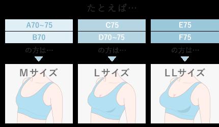 たとえば… A70~75 B70の方は…Mサイズ / C75 D70~75の方は…Lサイズ / E75 F75の方は…LLサイズ