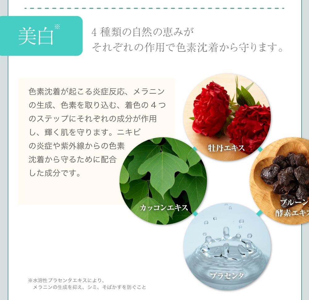美白:4種類の自然の恵みがそれぞれの作用で色素沈着から守ります。