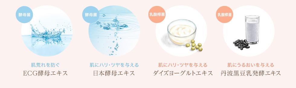 ECG酵母エキス,日本酵母エキス,ダイズヨーグルトエキス,丹波黒豆乳発酵エキス