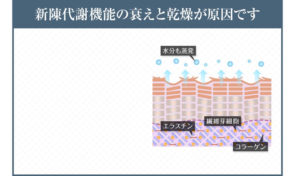 新陳代謝機能の衰えと乾燥が原因です