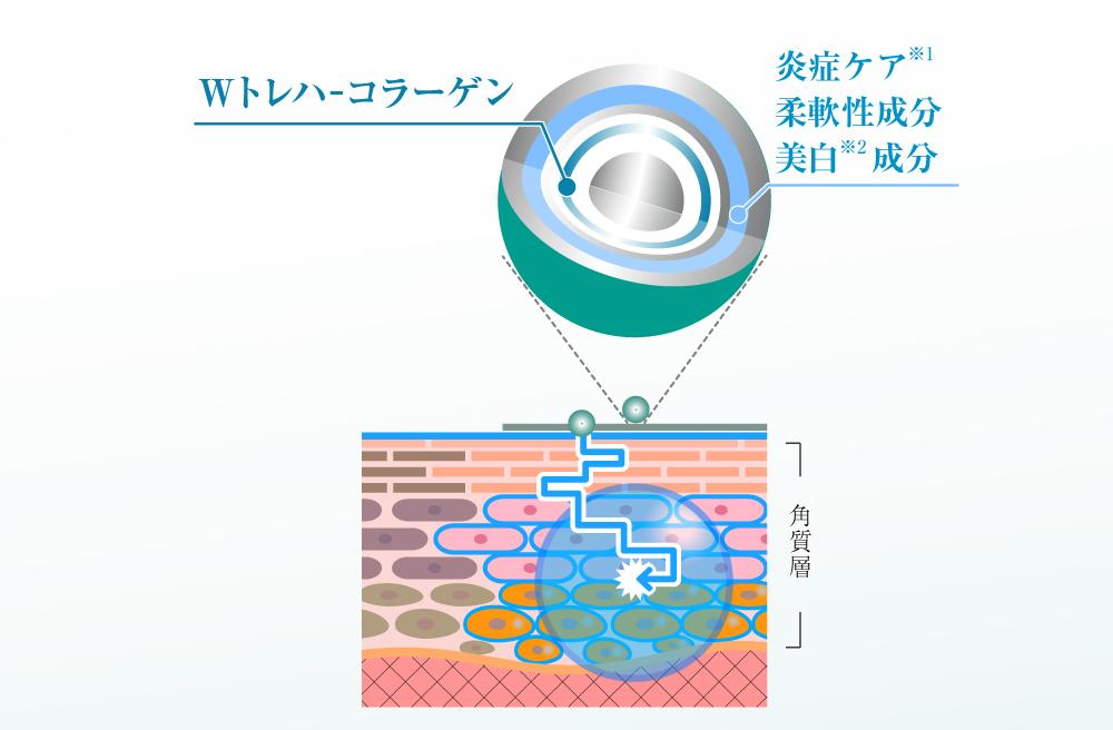 「ラメラ―ヴェールケア」解説図