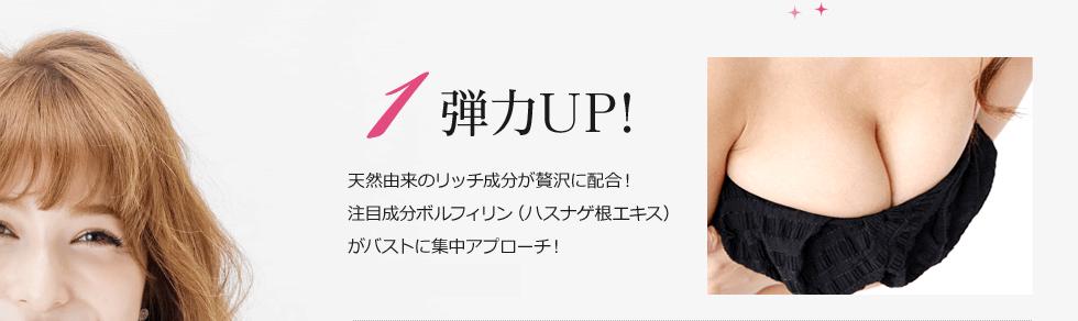 1弾力UP!